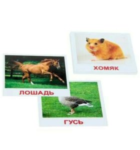 """Набор карточек """"Мини-20. Домашние животные"""""""