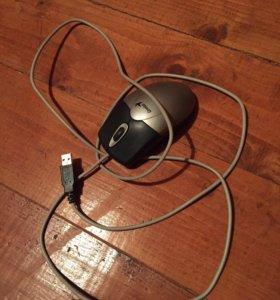 Мышь компьютерная и клавиатура
