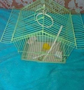Клетка доя попугая