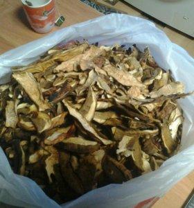 Сушёные грибы , белые.