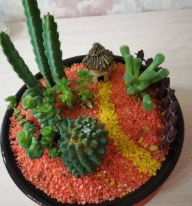 Мини-сад из кактусов и суккулентов