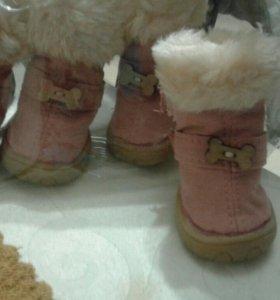 Ботинки зимнии для собак