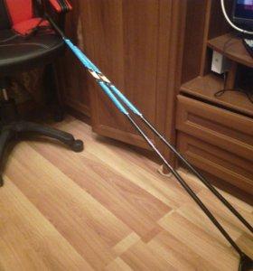 Лыжный палки