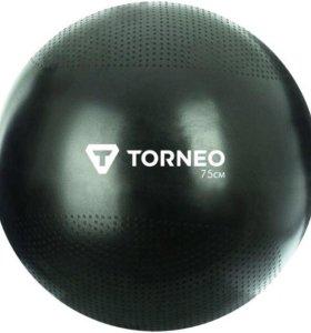 Гимнастический мяч Torneo A - 210