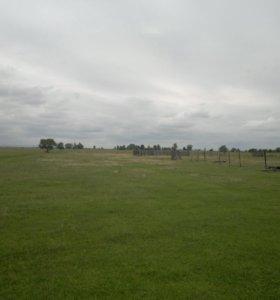 Участок, 560 сот., сельхоз (снт или днп)