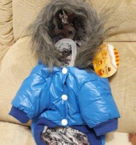 Куртка для животных