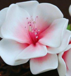 Цветы ,букеты,украшения из полимерной глины