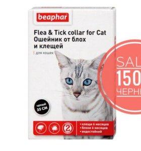 Ошейник от блох Beaphar для кошек