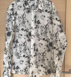 Мужские рубашки Calvin Klein, massimo dutti , mexx