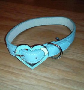 Ошейник для собак с сердечком