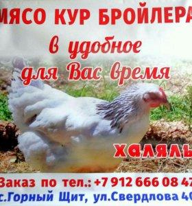 Парное мясо птицы
