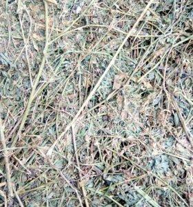 Люцерна зеленая в тюках