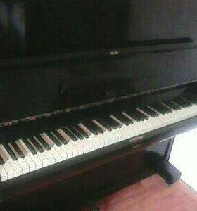 Пианино Березка