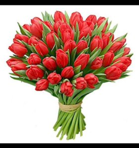 Доставка тюльпанов 🌷 🌷 🌷 к 8 марта!!!