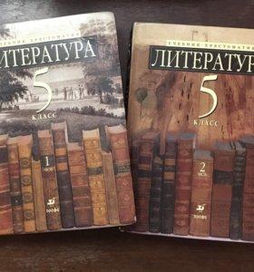 Литература М.Б. Ладыгина 5 класс
