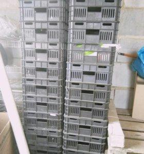 Ящики пластик