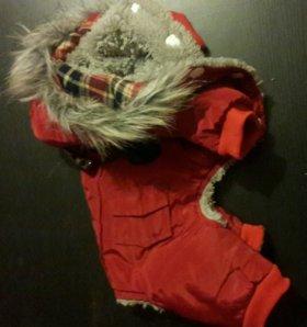 Одежда для собак. Комбинезон зимний для собак S