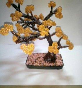 Деревья бансай