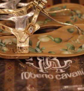 Новые шлепки Roberto Cavalli