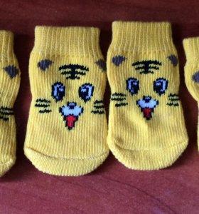 Носки для котов или для маленьких собак