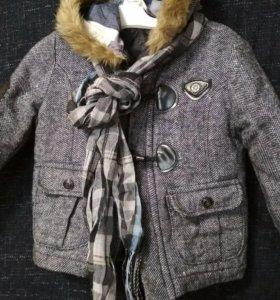Пальто брюки рубашка комплектом