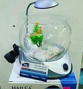 Круглый аквариум 2,5 литра