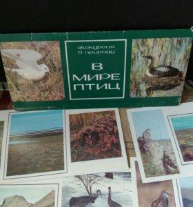 "Набор открыток ""В мире птиц"", 1986 год."