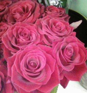 25 роз с доставкой на 8 марта спб и каждый день