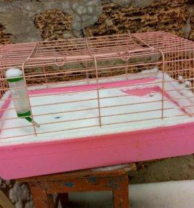 Клетка для морской свинки или кролика