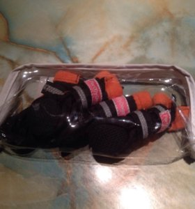 Новые ботиночки для собаки