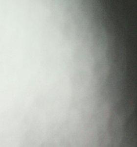 Веники для бани(берёзовые и дубовые)