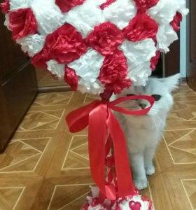 Топиарий - Дерево счастья - Прекрасный подарок