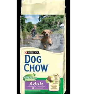 Качественный корм для собак