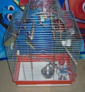 продам клетку для большого попугая