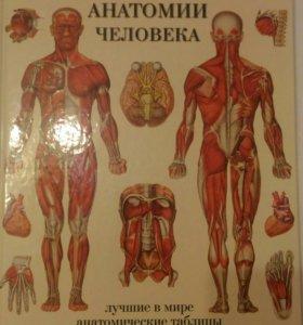 Атлас анатомических таблиц