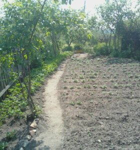 Участок, 4.5 сот., сельхоз (снт или днп)