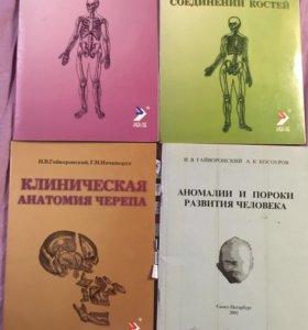 Анатомия Гайворонский