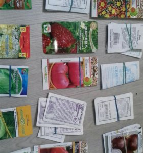 Семена по оптовым ценам