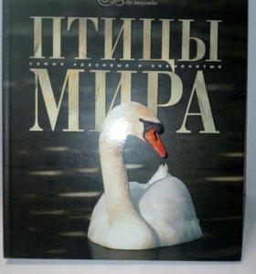 Энциклопедия птицы мира аванта +