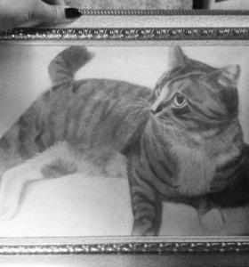 Рисую портреты карандашом