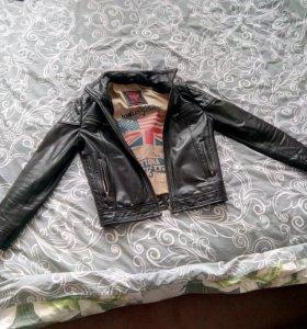 Кожаная куртка daytona
