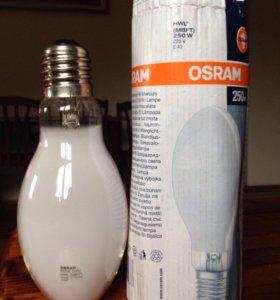 Лампа прямого включения HWL 250-40.