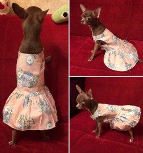 Одежда для собак/платье для собак