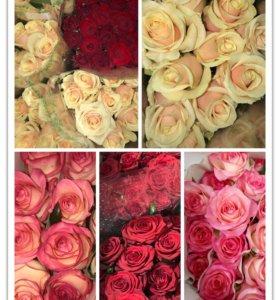 Красивые 🌹 розы