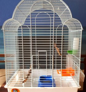 Клетка для мелких птиц.