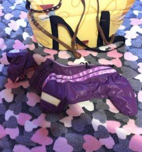 Комбенизон , шапочка , поводок , сумка переноска