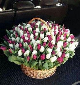 Тюльпаны спб в корзине