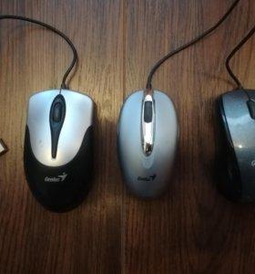 Компьютерные мыши