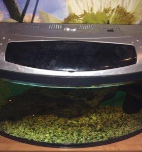 Продам аквариум 72 литра