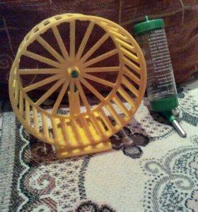 Поилка и колесо для грызунов👇👇👇